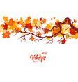 autumnal maple branch vector image
