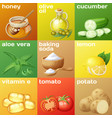 facial mask ingredients for home face skin care vector image vector image