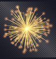 firework explosive burst flare decorative glowing vector image vector image