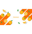 fresh orange fruit background in paper art style vector image