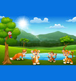 happy animals playing next to small ponds with mou vector image
