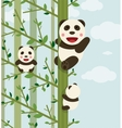 Kawaii Bears in Forest vector image