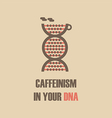 147caffeine in dna vector image vector image