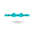 blue elegant bow vector image vector image