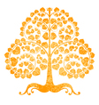 Bodhi tree on a white background vector image