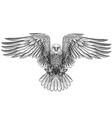 eagle flying bald