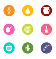 ideal food icons set flat style vector image vector image