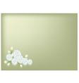 Jasmine Flowers on Green Background vector image