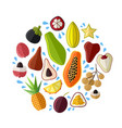 set of fresh exotic asian fruits in flat style vector image