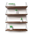 wooden shelves hanging on ropes with plants pots vector image