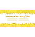banner template from sunflower vector image vector image