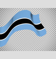 botswana flag on transparent background vector image vector image