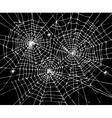 Halloween web background CCCVII vector image vector image