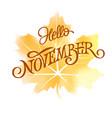 hello november typography on orange watercolor vector image vector image