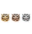 tigers watercolor wildlife annimals vector image vector image