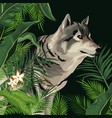 wolf in the jungle vector image vector image