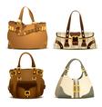 woman handbag vector image vector image