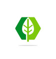 abstract green leaf eco bio logo vector image vector image