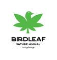 bird leaf logo vector image vector image