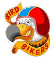 bird wearing helmet racer vector image
