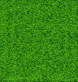 Green Soccer Grass Field vector image vector image