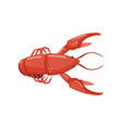 lobster fresh seafood cartoon vector image