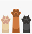 paws up pets vector image vector image