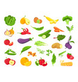 vegetable and fruit fresh vegetarian organic food vector image