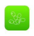 coccus bacilli icon green vector image
