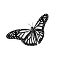 hand drawn sketch of butterfly in black color vector image vector image