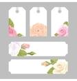 Set floral decorative elements vector image vector image