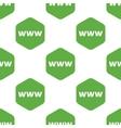 WWW pattern vector image vector image