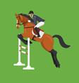 Horse Jumping Over Fence Equestrian sport vector image