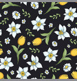 seamless pattern daffodils hand drawing vector image