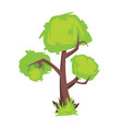 tree with green foliage isolated on white vector image vector image
