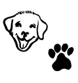 dog footprint vector image vector image