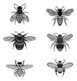 set bees in zentangle style collection of vector image vector image