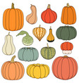 set color with pumpkins vector image