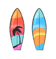 two colorful surfing boards isolated on white vector image