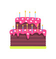 birthday cake with burning candles isolated vector image
