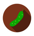 cucumber flat circle icon vector image