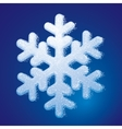 Frosted snowflake vector image vector image