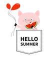 hello summer pig face head in pocket vector image