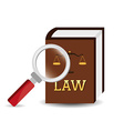 Law design vector image vector image
