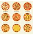 Pizza set icons vector image