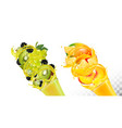 set fruit juice splash in glasses grapes vector image vector image