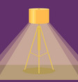 colorful lamp light icon vector image