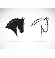 horse head design on white background wild vector image vector image