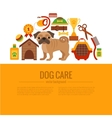 Pug care infographic concept vector image vector image