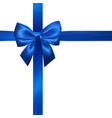 realistic blue bow with blue ribbons isolated on vector image vector image